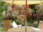 Terrace table chairs shade sun drinks ice cold kids play pool summer relaxing sunbeds flowers plants trees courtyard garden nissan holiday rental languedoc herault
