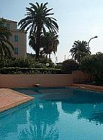 shared swimming pool blue fresh water holiday rental france languedoc cote d'azur menton apartment palm trees
