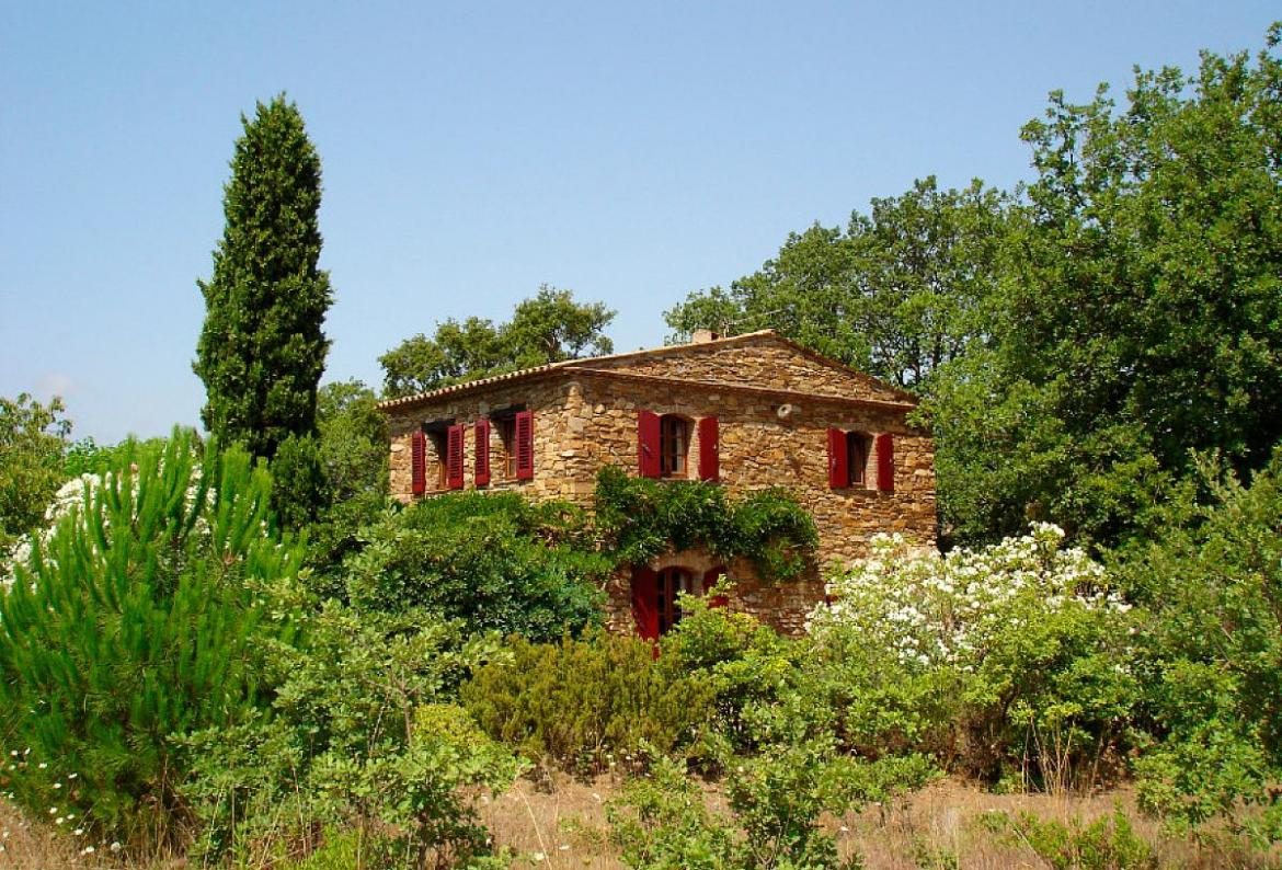 RAM102D - Beautiful French 5 bedroom stone home nestled in the vineyards of Ramatuelle with private pool