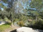 Maison Cessenon Languedoc rental holiday visit property house private grounds nature