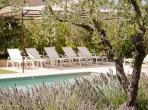 Beautiful 4 bedroom villa in Eygalieres, surrounded by olive groves, with private heated pool, aircon and table tennis. Sleeps 10. (EYGA120EE)