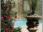 Private swimming pool courtyard plants holiday rental Nissan languedoc walls
