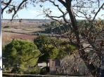 Large, Well-Appointed House with Pool near Pezenas. 6 bedrooms, sleeps up to 12 (PEZ133J)