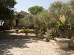 Beautiful 3 bedroom Provencal villa with private pool near Roque-sur-Pernes (PLF105EE)
