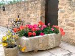 Traditional home with pool in Minervois (SJDM101J)
