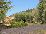 Stunning Domaine located in the heart of Provence with a large private pool, sleeps 17. (VAIS101EE)